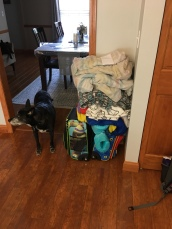 The kids' suitcases for the week...my kids really like blankets.